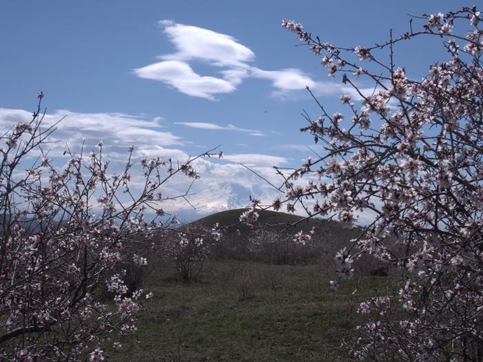 これだから旅って楽しい!アルメニアの素敵なおもてなしに、ただただ驚きと感謝です。 (21)
