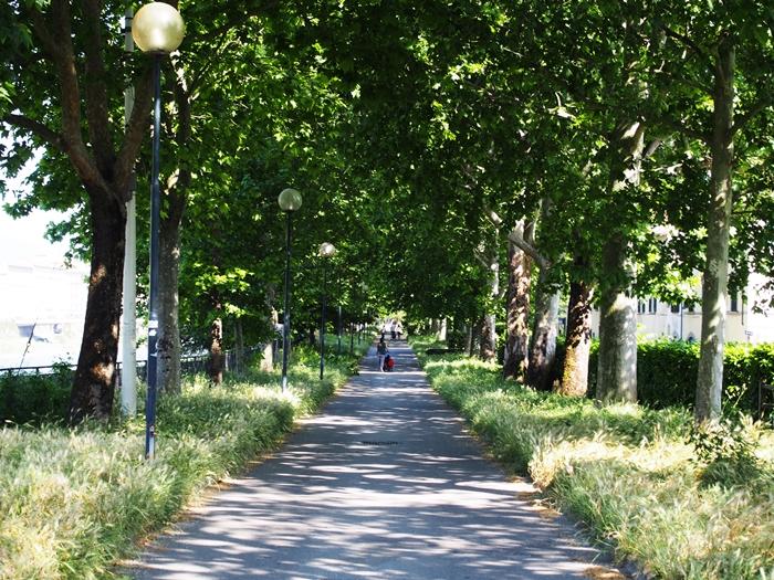 【イタリア12】花の都フィレンツェ!レストラン、土産物情報も少しだけ。 (15)