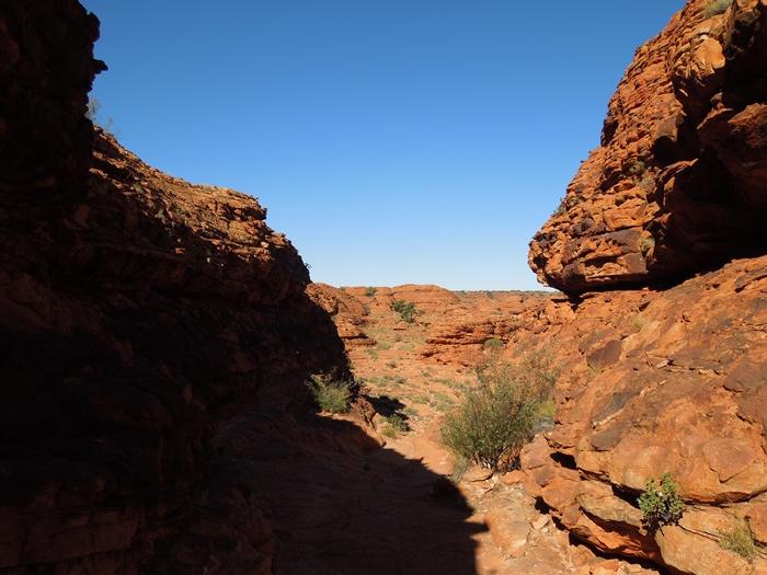 オーストラリア4