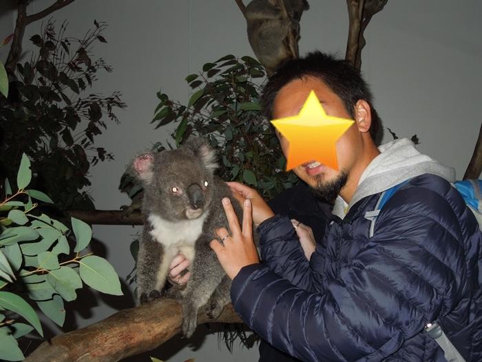 コアラと記念撮影 in シドニー/コアラパーク