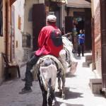 【モロッコ04】1000年の歴史を持つ迷宮都市フェズ