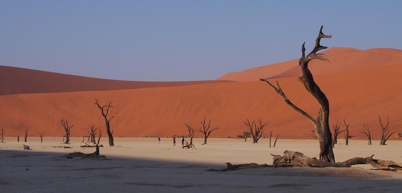 【ナミビア03】ナミビアレンタカーの旅 Part2 赤い砂漠と白い死の沼地へ!ソススフレイとデッドフレイ