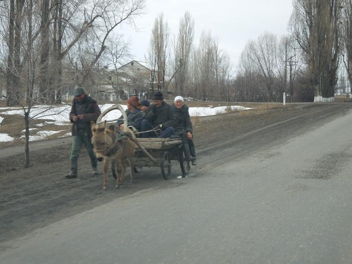 冬のイシククル湖へ!~チョルポン・アタの町より~ (16)