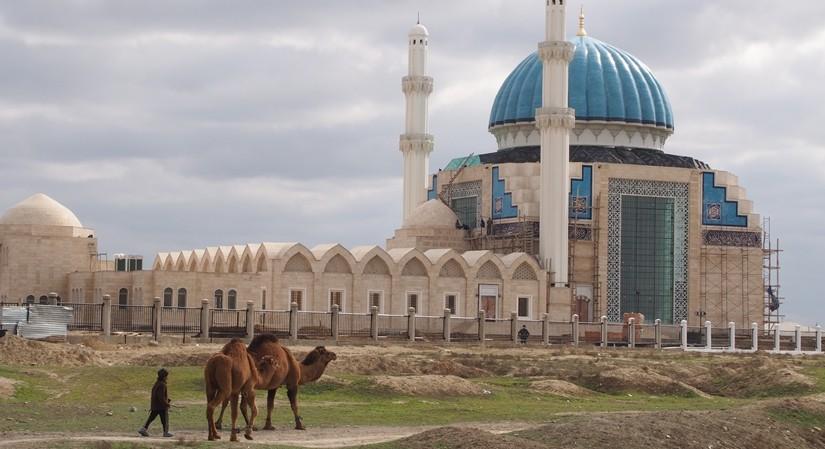 【カザフスタン02移動・観光情報】シムケントからトルキスタンにある世界遺産コジャ•アフメド•ヤサウィへ!ラクダと初対面♪