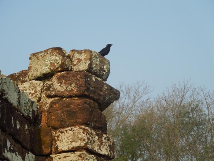 世界遺産を独り占め!パラグアイ唯一の世界遺産 トリニダー遺跡 (10)