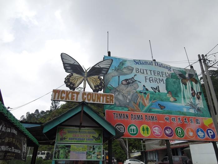 南国マレーシアの避暑地 キャメロンハイランド半日ツアー (18)
