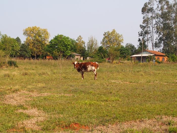 世界遺産を独り占め!パラグアイ唯一の世界遺産 トリニダー遺跡 (18)