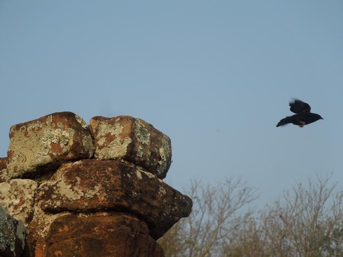 世界遺産を独り占め!パラグアイ唯一の世界遺産 トリニダー遺跡 (11)