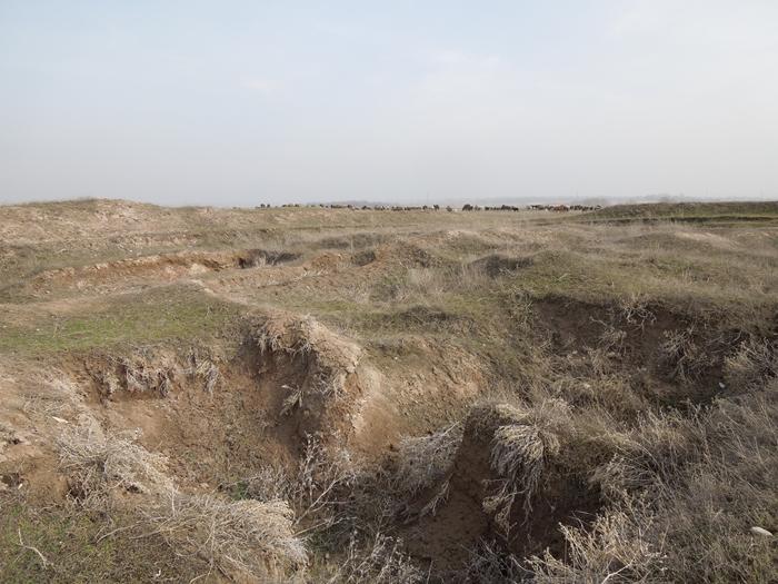 ブラナの塔とバラサグン遺跡、そして三蔵法師の足跡に触れるアク・ベシム遺跡 (8)