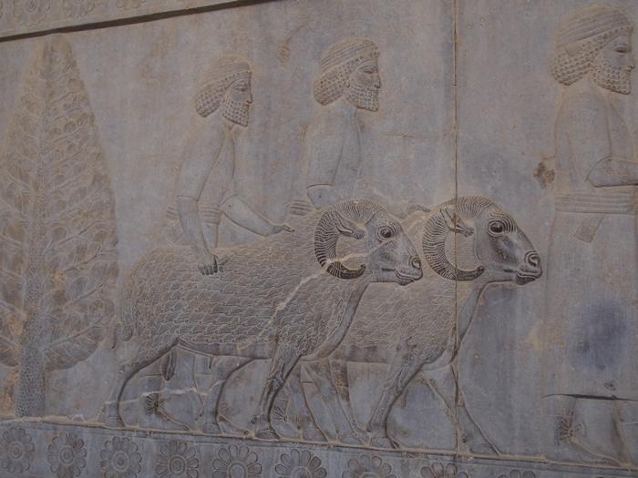 世界遺産ペルセポリス ペルシャ繁栄の面影を残すアパダーナのレリーフに釘付け (30)