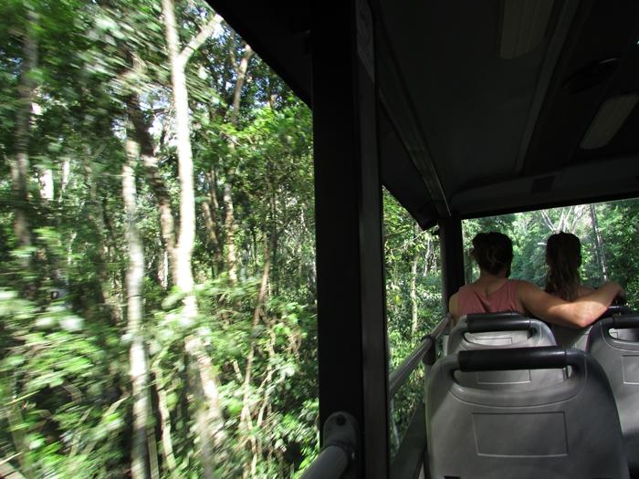 世界遺産のイグアスの滝 第二弾はブラジル側~水しぶきをびっしゃりかぶるの巻~ (3)