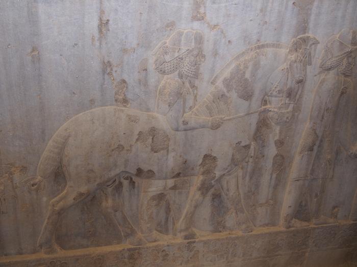 世界遺産ペルセポリス ペルシャ繁栄の面影を残すアパダーナのレリーフに釘付け (32)