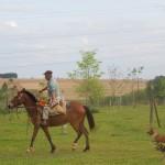 【パラグアイ06】民宿小林の幸せな生活