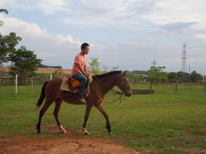 南米のオアシス、いや世界一周旅行者にとってのパラダイス 民宿小林より (36)