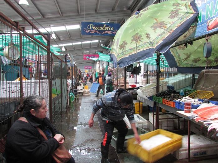 【チリ08 世界遺産】カラフルなカストロ(チロエ島)の町歩き (5)