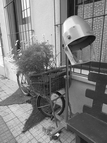 【ウルグアイ01】まさに桃源郷。時間がゆったり流れる世界遺産、コロニア・デル・サクラメント (23)