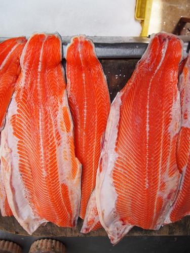 【チリ07】サーモン!ムール貝!!ウニ!!!チロエ島で海産物三昧の日々 (21)