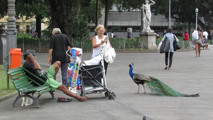 【ブラジル06】リオPart1~観光編~水着から階段までカラフルなリオ! (15)