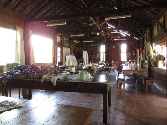ブラジルで農業体験!~弓場農場の一日~ (23)