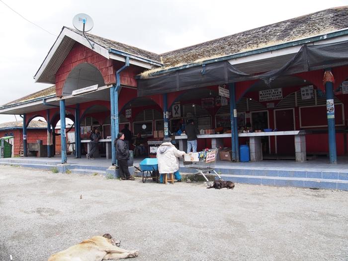 【チリ07】サーモン!ムール貝!!ウニ!!!チロエ島で海産物三昧の日々 (18)