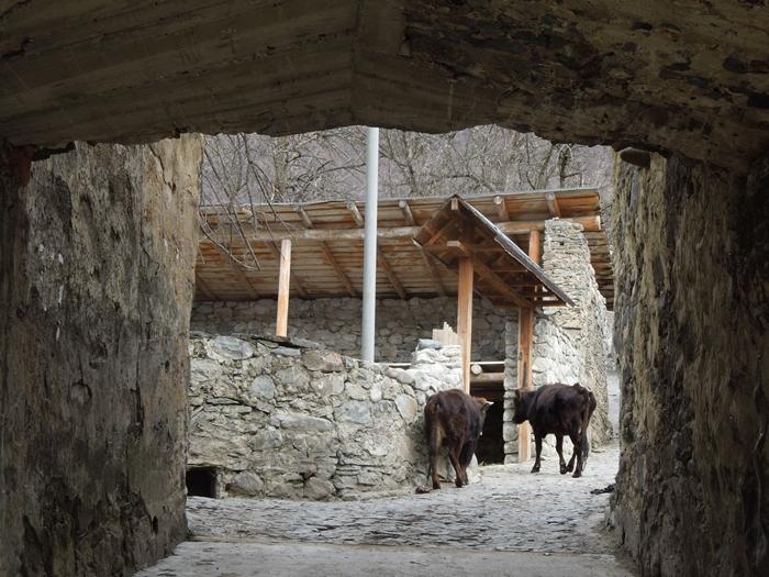 【ジョージア06 世界遺産】息をのむほど美しいジョージアの大自然 メスティア観光 (6)