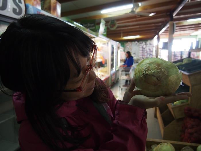 【チリ02】チレ・チコ~青い湖のあるのどかな町~でのんびりリラックス (14)