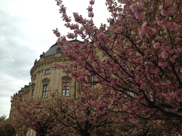 【ドイツ05】ドイツに乾杯!世界遺産ライン川とロマンチック街道6日間 ~ローテンブルグでお買い物♪夢のようなツアーをありがとう!〜 (34)