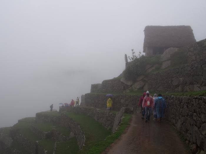 【ペルー06 世界遺産】雨降りしきる空中都市マチュピチュ (13)