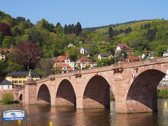 【ドイツ02】ドイツに乾杯!世界遺産ライン川とロマンチック街道6日間 ~Sho、家族と感動の再開二日目~ (40)