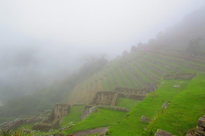 【ペルー06 世界遺産】雨降りしきる空中都市マチュピチュ (8)