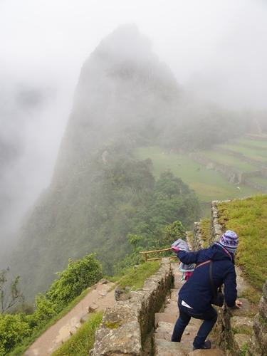 【ペルー06 世界遺産】雨降りしきる空中都市マチュピチュ (24)