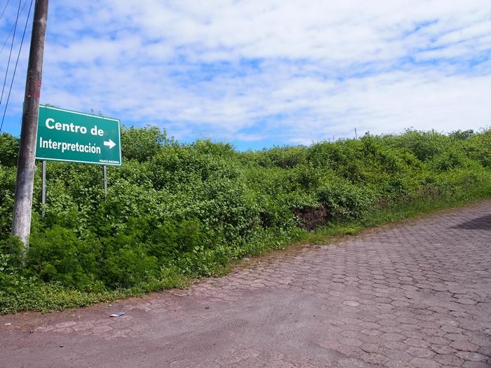 【エクアドル05】アシカに首ったけ!ガラパゴスPart4(サンクリストバル島) (41)