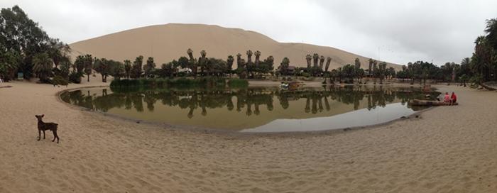 【ペルー12】ペルーにある砂漠のオアシス?ワカチナ (21)