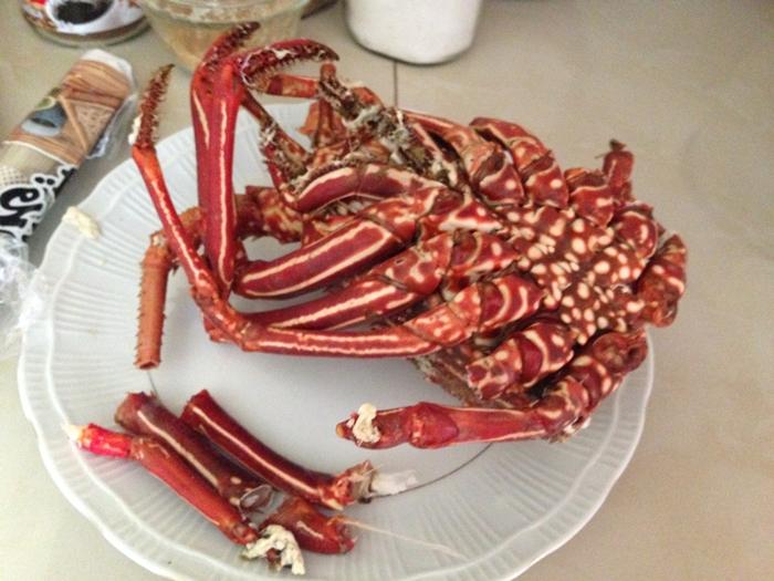 【エクアドル06】プエルト・バケリソ・モレノサンクリストバル島の宿、レストラン情報などあれこれ ガラパゴスPart5 (35)