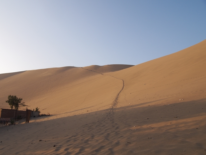 【ペルー12】ペルーにある砂漠のオアシス?ワカチナ (7)