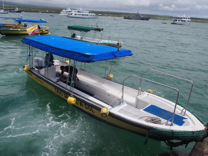 【エクアドル03】世界でここだけ!イグアナと泳げるビーチ。ガラパゴスPart2(サンタクルス島) (18)