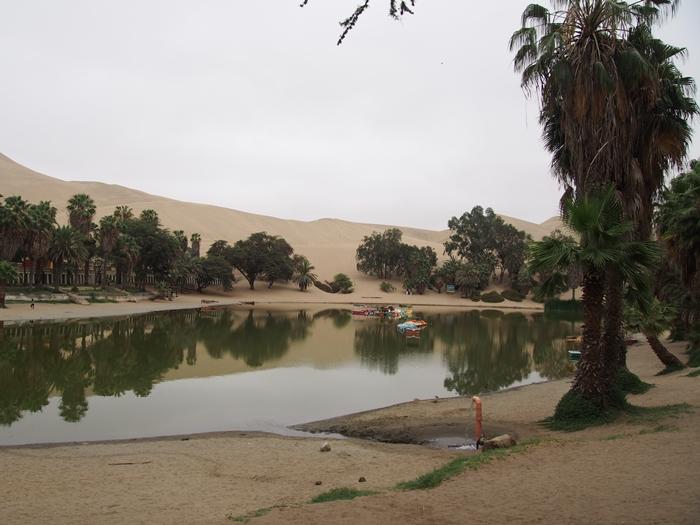 【ペルー12】ペルーにある砂漠のオアシス?ワカチナ (19)