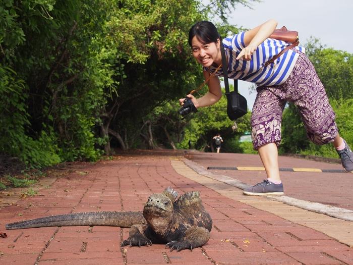 【エクアドル02】ゾウガメ!イグアナ!アシカ!ガラパゴスPart1(サンタクルス島) (26)