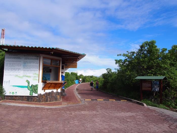 【エクアドル02】ゾウガメ!イグアナ!アシカ!ガラパゴスPart1(サンタクルス島) (29)