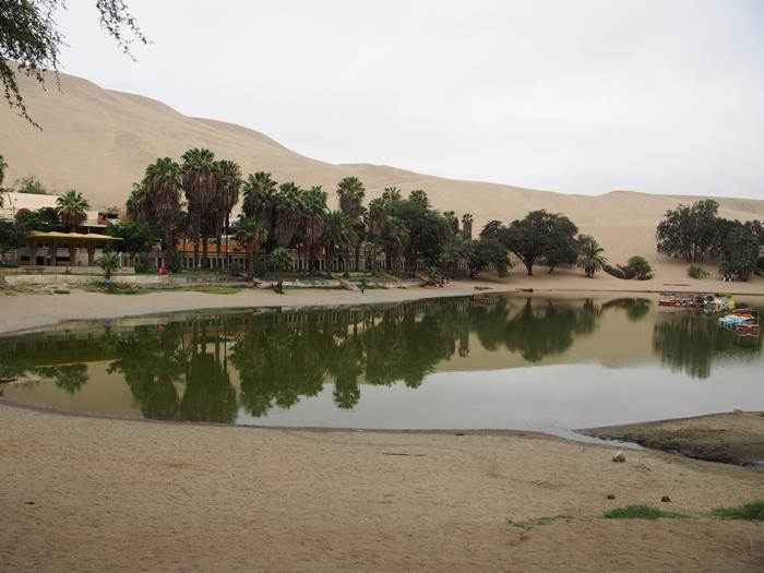 【ペルー12】ペルーにある砂漠のオアシス?ワカチナ (18)