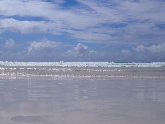 【エクアドル03】世界でここだけ!イグアナと泳げるビーチ。ガラパゴスPart2(サンタクルス島) (42)