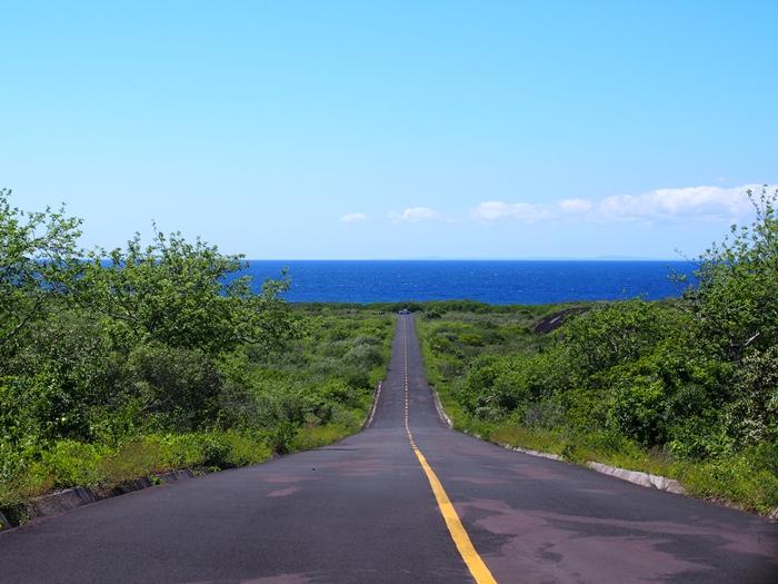 【エクアドル05】アシカに首ったけ!ガラパゴスPart4(サンクリストバル島) (36)
