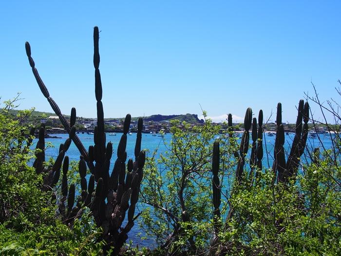 【エクアドル06】プエルト・バケリソ・モレノサンクリストバル島の宿、レストラン情報などあれこれ ガラパゴスPart5 (25)