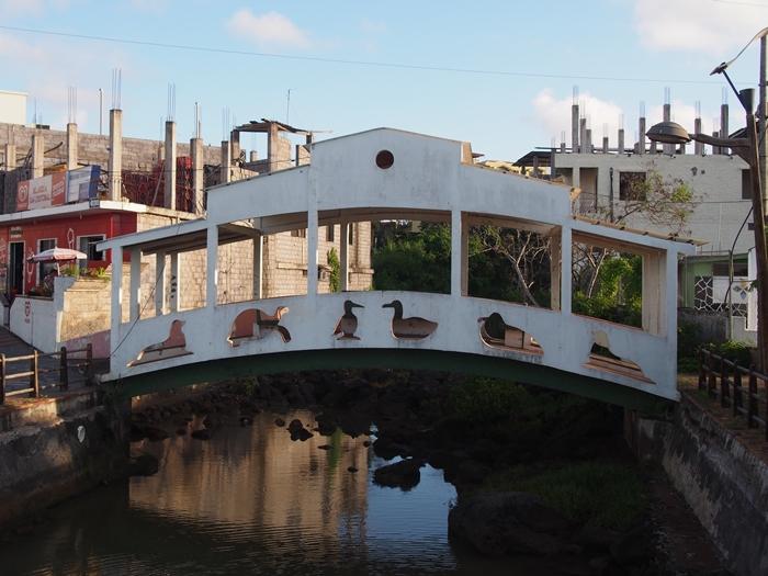 【エクアドル06】プエルト・バケリソ・モレノサンクリストバル島の宿、レストラン情報などあれこれ ガラパゴスPart5 (2)