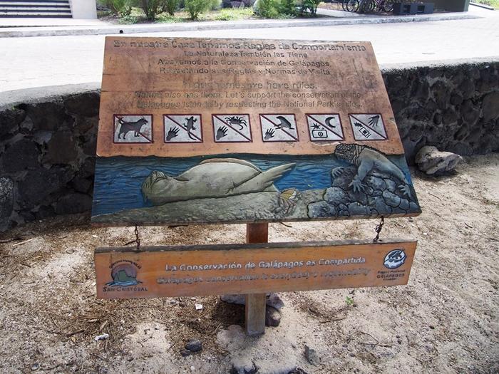 【エクアドル05】アシカに首ったけ!ガラパゴスPart4(サンクリストバル島) (40)