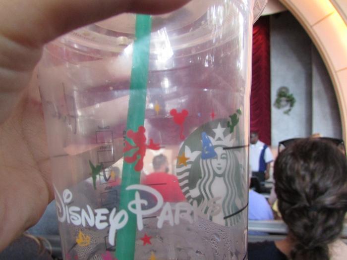 【アメリカ05】フロリダディズニー Part4〜ハリウッドスタジオ!キャラクターグリーティング編〜 (29)