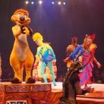 【アメリカ06】フロリダディズニー Part5〜アニマルキングダム!アトラクション編〜