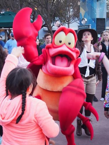 【アメリカ05】フロリダディズニー Part4〜ハリウッドスタジオ!キャラクターグリーティング編〜 (28)