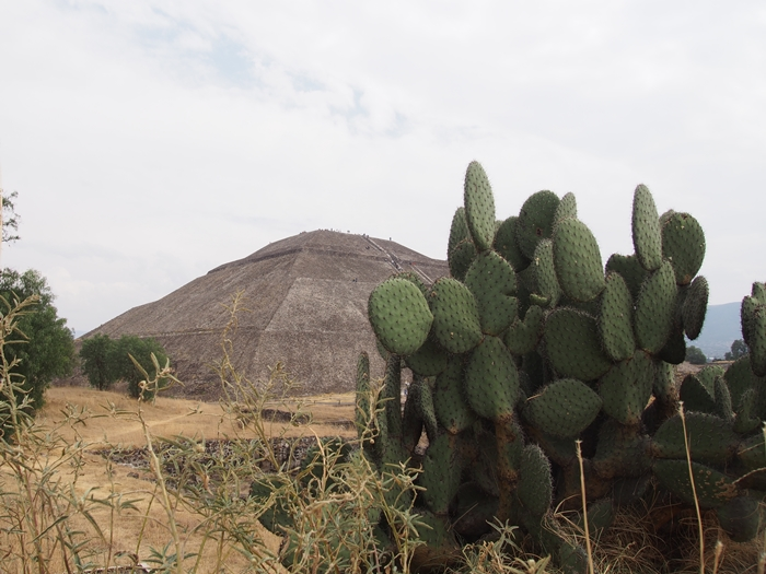 【メキシコ08】世界で三番目?!テオティワカン・太陽のピラミッド (37)