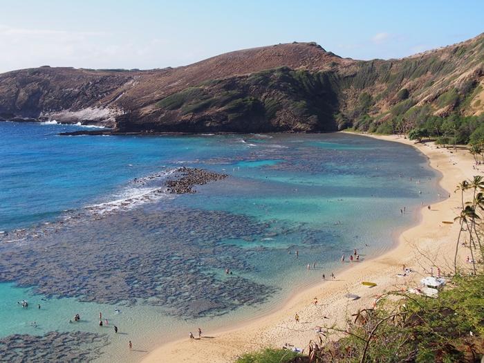 【ハワイ02】The Busで行くオアフ島随一のシュノーケリングスポット・ハナウマ湾! (6)